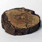 round-spalted-oak-002-top