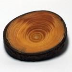 round-spruce-002-top